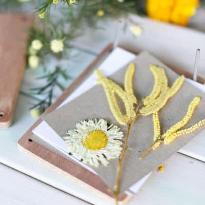 Flower Press Kit Eco gifts