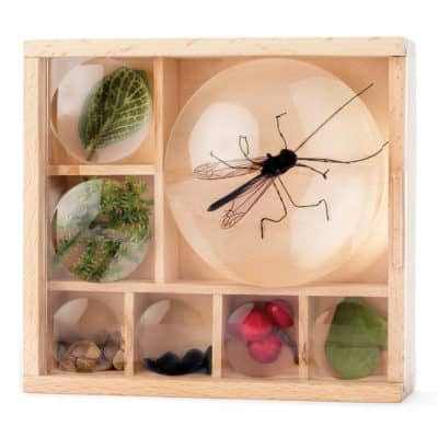 wooden Nature Bug Box