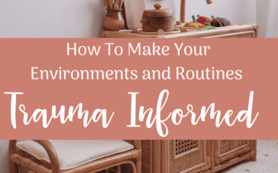 How To Make Your Environments and Routines Trauma Informed