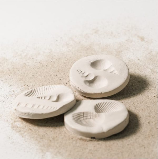 Fun Fossil Kit for learning
