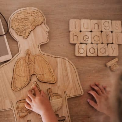 Wooden Human Body Puzzle for kids