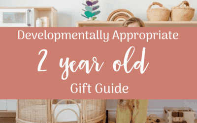 Developmentally Appropriate Gift Guide for 2 year olds