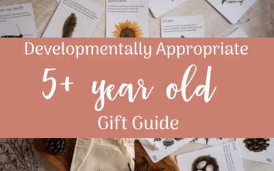 Developmentally Appropriate Gift Guide for 5+ year olds
