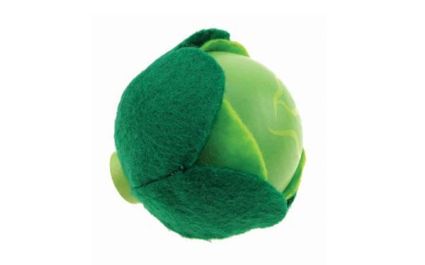 lettuce child care toy