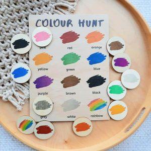 Colour Hunt Board & Discs