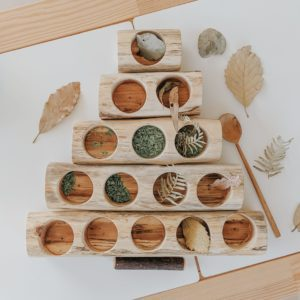 Log Sorting Trays (Set of 5) by QToys
